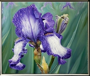 """Iris after the Rain"" by Gary Fox"