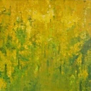 Golden rain-Laburnum