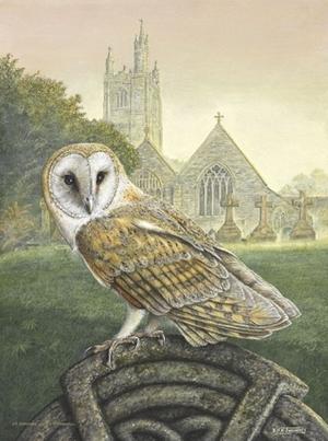 Celtic Perch, Barn Owl