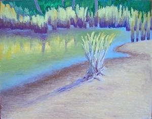 Grasses -Bayou Sauvage