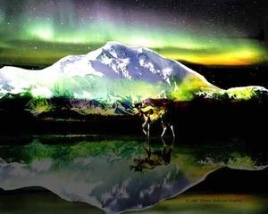 Denali under the Northern Lights