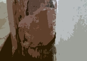 1529-9658-image-thumb