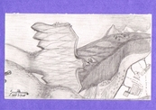Raptor_ridge-thumb
