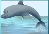 Dolphin19-thumb