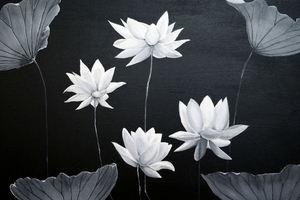 Lotuses & Lily Pads