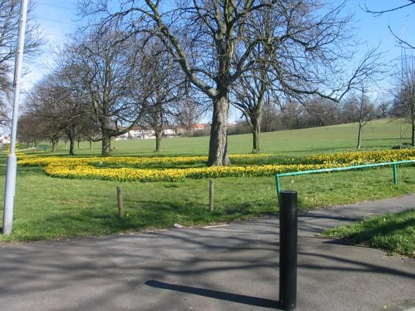 Angel_hill_park-normal