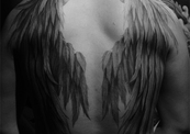 Tattoo_temple_wings_joey_pang-thumb