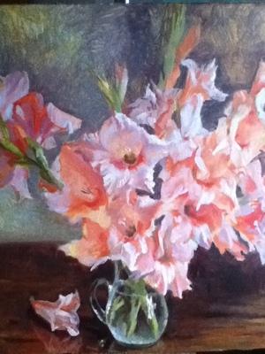 Pink gladioluses