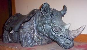 Rhino Trunk