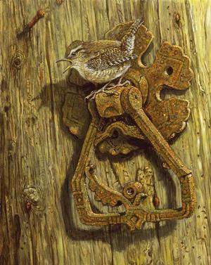 Wren & Door Latch