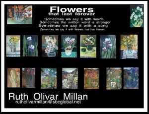 Galeria Olivar Millan in San Felipe, Baja Cal Mex.