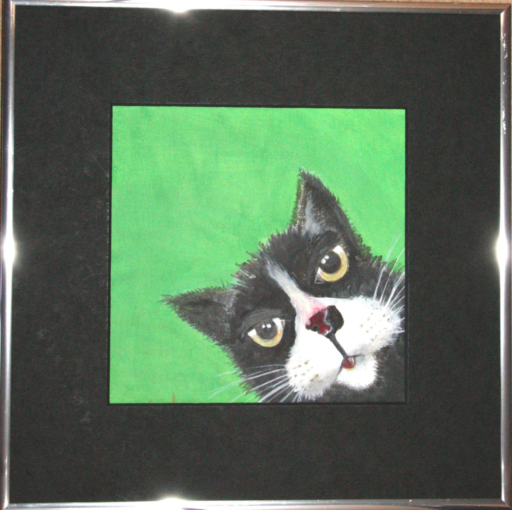 Black_and_white_puss_green_background-normal