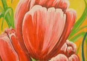 Tulips_small-thumb