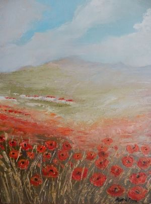 It's poppies time